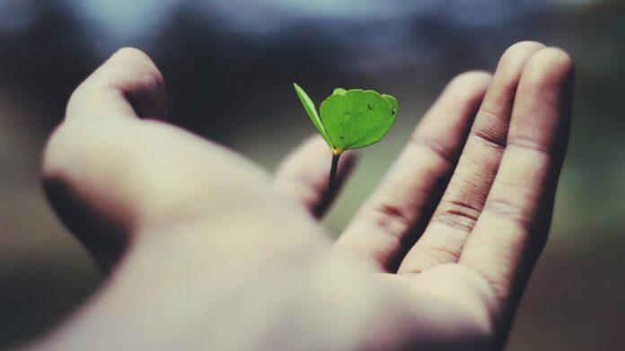 Wat maakt het leven mooi? 10 stappen naar een mooi leven.