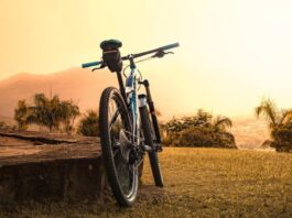 Ga toch fietsen! 10 redenen waarom je lekker met de fiets erop uit zou moeten